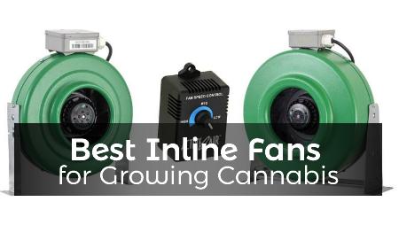 best inline fans