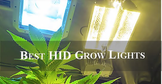 best hid grow lights